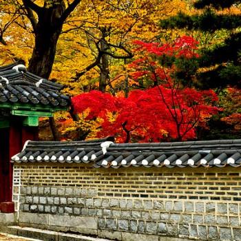 Hà Nội – Seoul – Jeju – Nami – Everland (6N5Đ)