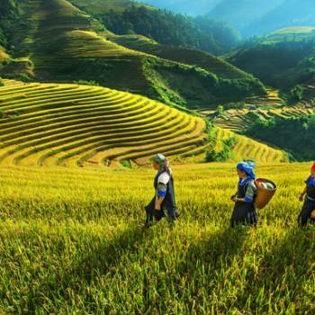 Hà Nội – Hà Giang – Đồng Văn – Lũng Cú – Mèo Vạc – Cao Bằng ( 4N3Đ)