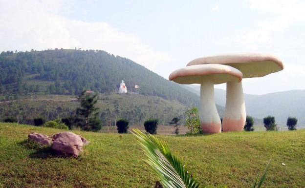 BAI-LU-RESORT-NGHI-DUONG-2N1D_2012101162153290