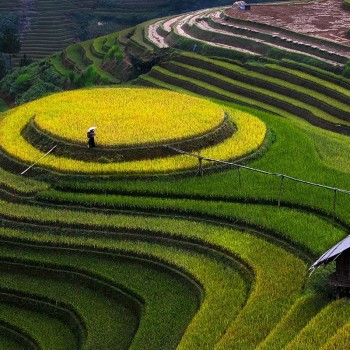 Experience Sapa – Mu Cang Chai Tour 7 days 6 nights