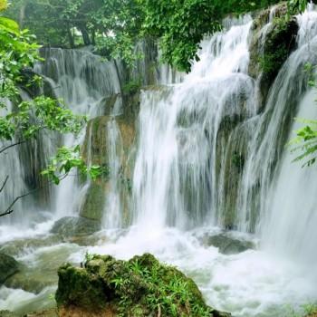 Hoa Lu – Tam Coc – Cuc Phuong National Park  (2d1n)