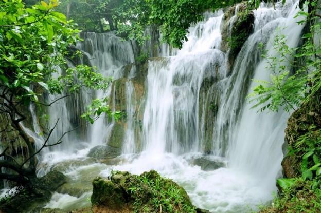Cuc-Phuong-Resort-9