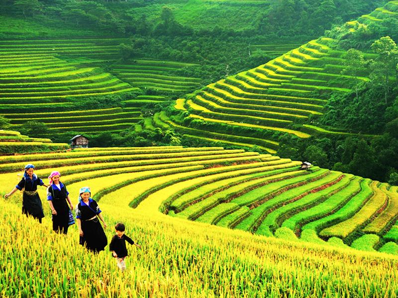 Highlights Northwest Vietnam Tour
