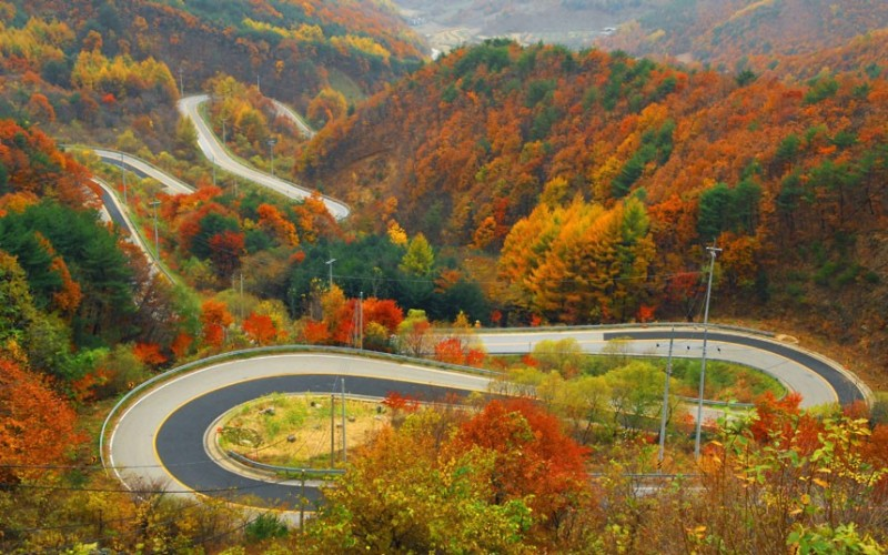 Doma Pass in autumn colors...epa03455314 A photo released by the Yeongdong municipality on 02 November 2012, shows the scenery around the Doma Pass Alpine Route in the town of Yeongdong, central South Korea, with leaves turning red and yellow. The mountain pass, which has 24 bends, commands a superb view in the autumn. EPA/YONHAPNEWS