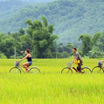 TOUR : Khám phá thung lũng Mai Châu xinh đẹp