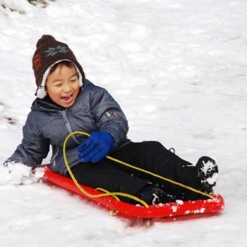 Mùa Đông Xứ Hàn: Seoul – Everland – Trượt tuyết Yangji Pine – Nami