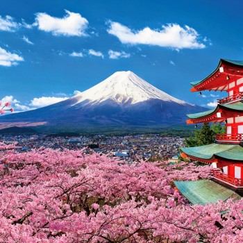 Liên Tuyết Nhật Hàn : TOKYO –NÚI PHÚ SỸ – HAKONE – KYOTO – OSAKA – SEOUL ( 7n6đ)
