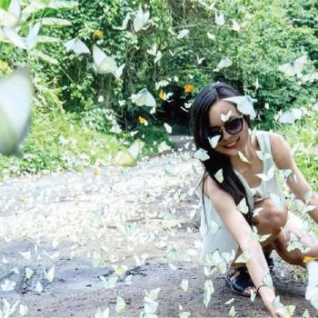 TOUR Cúc Phương – Mùa Bướm Hàm Hương 01 Ngày