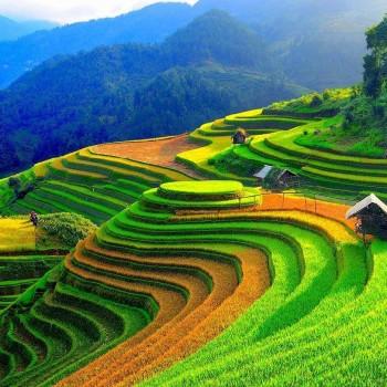 Hà Nội – Mai Châu – Mộc Châu – Điện Biên  Mù Cang Chải –Tú Lệ – Nghĩa Lộ – Suối Giàng