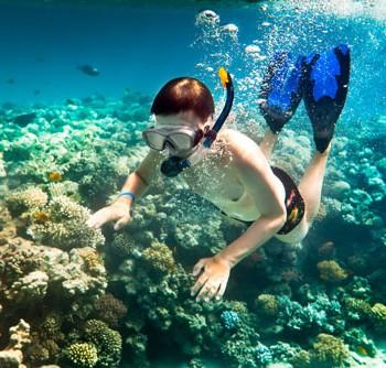 Snorkeling in Cu Lao Cham Island tour