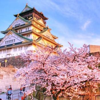 Hà Nội – Osaka – Kyoto – Toyohashi – Kawaguchi – Tokyo ( 6N5Đ)