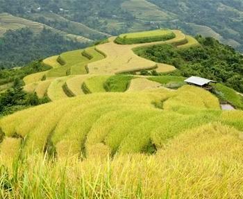 Hà Nội – Hà Giang – Đồng Văn – Lũng Cú –  Mèo Vạc – Hoàng Su Phì – Hà Nội