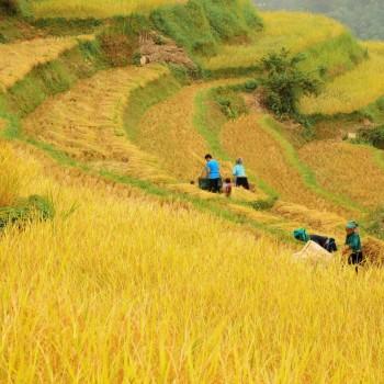 Hà Nội – Hà Giang – Đồng Văn – Lũng Cú – Mèo Vạc