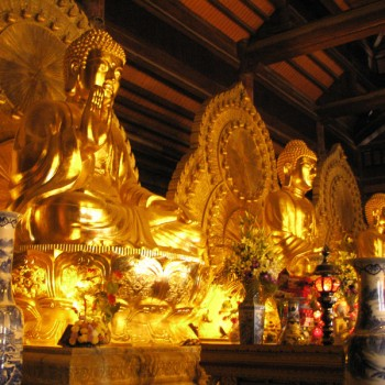 Trang An – Bai Dinh pagoda  full day trip