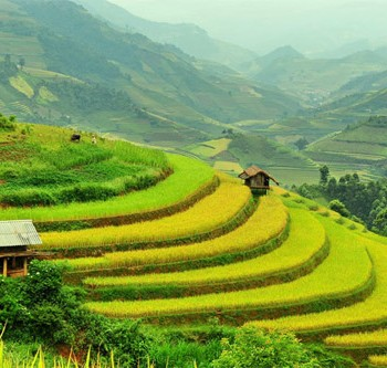 Sapa – Cat Cat Village- Ham Rong Mountain TOUR