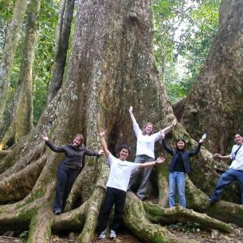 Cuc Phuong Nationa park Full day trip