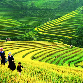 Highlights Northwest Vietnam Tour
