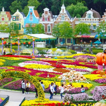 Du lịch Hàn Quốc : SEOUL – JEJU – EVERLAND 6N5Đ